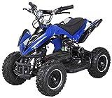 Actionbikes Motors Mini Elektro Kinder Racer 800 Watt ATV Pocket Quad Kinderquad Kinderfahrzeug... (Blau/Schwarz)