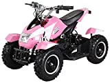 Actionbikes Motors Mini Kinder Elektro Quad ATV Cobra 800 Watt 36 V Pocket Quad - Original Saftey Touch - Kinder E Bike (Schwarz/Grün)