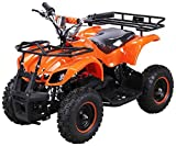 Elektro Kinder Miniquad TORINO 800 Watt ATV Pocket Quad Kinderquad Kinderfahrzeug (Orange)