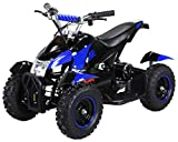 Actionbikes Motors Mini Kinder Elektro Quad ATV Cobra 800 Watt 36 V Pocket Quad - Original Saftey Touch - Kinder E Bike (Schwarz/Blau)