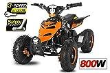 Eco Repti 6' 800W Quad Fusspedal + 3-Stufen Regulierer ATV Bike Pocket Kinderfahrzeug Elektrofahrzeug Elektro (Orange)