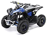 Actionbikes Motors Mini Kinder Elektro Quad ATV RENEBLADE 1000 Watt Pocket Quad - Original Saefty Touch Fußschalter - 36 Volt - Kinder Pocketquad (Schwarz/Blau)